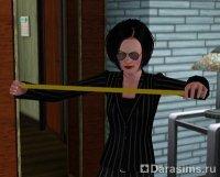 Карьера архитектора в The Sims 3 Ambitions