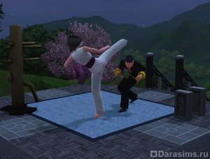 Навык боевых искусств Сим Фу и медитация