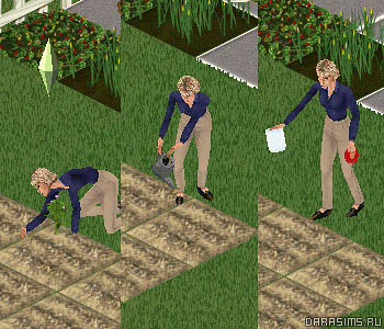 Cадоводство и огород в «The Sims: Unleashed»
