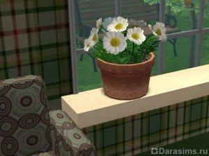 Создание новых цветов и растений в Симс 2