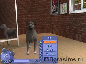 Комната создания персонажа (CAS)