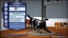 Уникальные животные из «The Sims 3 Питомцы Limited Edition» для консолей
