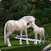 Питомцы покоряют мир The Sims 3