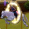 Навык прыжков, навык скорости и тренировки в The Sims 3 Питомцы