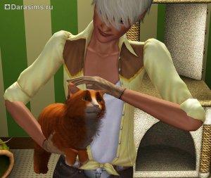 Коты, кошки и котята в «The Sims 3 Питомцы»