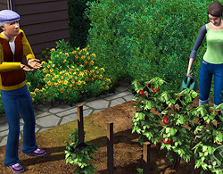 Садоводство в Симс 3