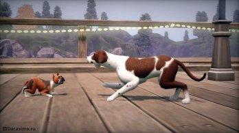 Собачьи разборки в Симс 3 Питомцы