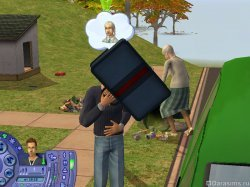 Чемоданом по лицу [The Sims 2]