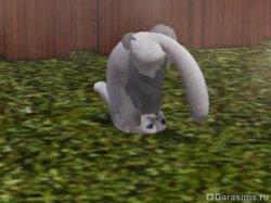 Котейка vs черепаха [The Sims 3]