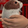 Мелкие животные и птицы в «The Sims 2: Питомцы»