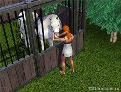 Готова на все, чтобы погладить лошадку [The Sims 3]