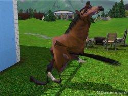 Лошадку колбасит [The Sims 3]