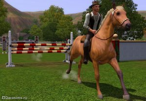 Неформальный заработок в «The Sims 3» и аддонах