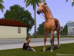 Зыбучая трава [The Sims 3]