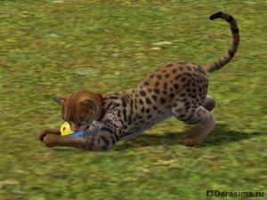 Навык охоты в «The Sims 3 Питомцы»