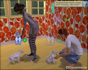 Оборотни в «The Sims 2: Питомцы»
