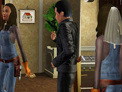 Сантехник-невеста, замуж вызывали? [The Sims 3]