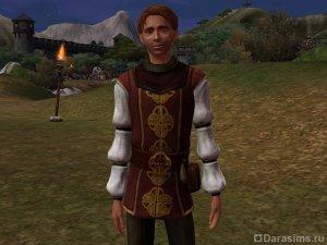 Герой Рыцарь в «Симс Средневековье»