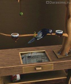 Шашлык из совы [The Sims 3]