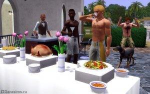 Вечеринки в «The Sims 3» и аддонах