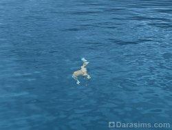 Морской конек [The Sims 3]