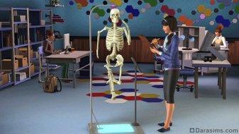 Анатомия в «The Sims 3 University Life»