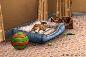Собаки и щенки в «The Sims 3 Питомцы»