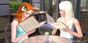 Долгожданный бизнес появится в The Sims 3 Store?