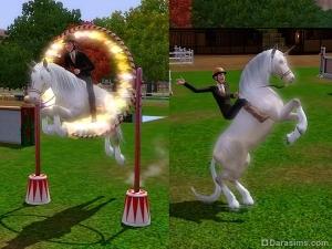 Верховая езда в «The Sims 3 Питомцы»