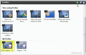 Обзор программы SnagIt для скриншотов в Симс