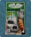 Интересы в The Sims 2
