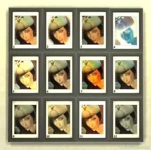 Фото-фильтры в навыке фотографии The Sims 4