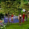 Общественный сад в The Sims 2