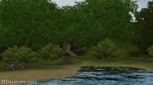 тропинка среди деревьев