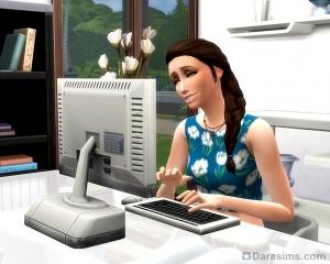 Сим программирует или взламывает компьютеры