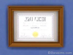 Диплом доктора медицинских наук в Симс 4