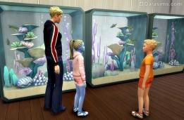 Большие аквариумы в ресторане