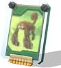 Монстр Симгайя, игровая карта