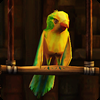 Птицы в «Симс Средневековье: Пираты и знать»