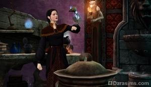 Собрать и оживить попугая-скелета в The Sims Medieval