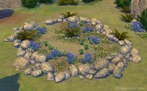 Редкие растения и травы