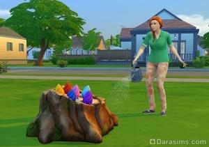 Сим поливает волшебный пень с бобами