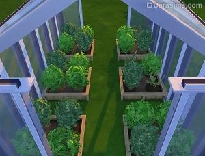 растения в квадратных клумбах