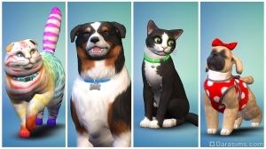редактор создания питомца в симс 4 кошки и собаки