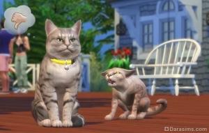 кошки в дополнении sims 4 кошки и собаки