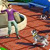 Управление собаками и кошками в новом дополнении