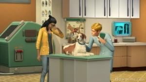 ветеринар за работой