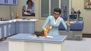 ветеринар в The Sims 4 Кошки и собаки