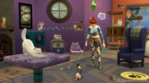 взаимодействия с животными в The Sims 4 Кошки и собаки