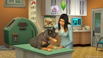 Ветеринар из The Sims 4 Кошки и собаки
